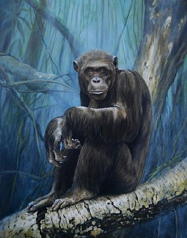 Keeper of the Congo - Portrait of a Chimpanzee by Rob Dreyer