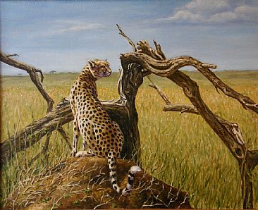 Cheetah by a tree - Big cats by Werner Rentsch