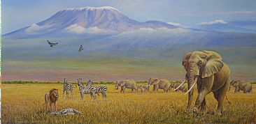 Conflict at Kilimanjaro - African wildlife by Werner Rentsch