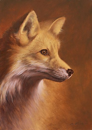 Red fox art for Cool fox drawings