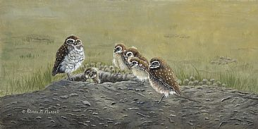 Ground Owls - Burrowing Owls by Patricia Mansell