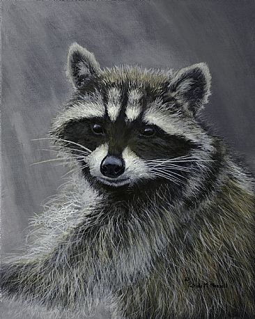 Unmasked - Raccoon by Patricia Mansell