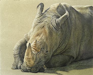 Mr. Big - White Rhino by Karla Mann