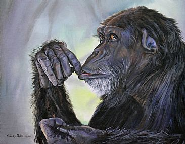 Contemplation of Plight - Chimp by Cindy Billingsley