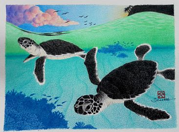 Dive Fast, Dive Deep! - Green Sea Turtle (Haw'n: honu) hatchlings by Solveig Nordwall