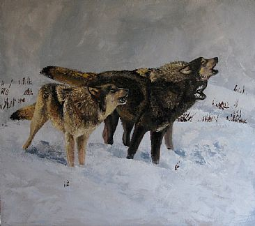 The Nature of Wolves - Wolves by Virginie Baude