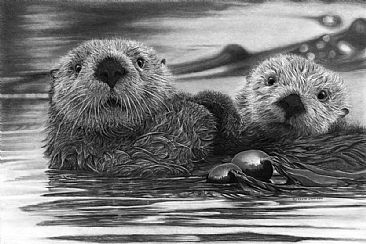 For Generations To Come - Sea Otters - Sea Otters by Kevin Johnson