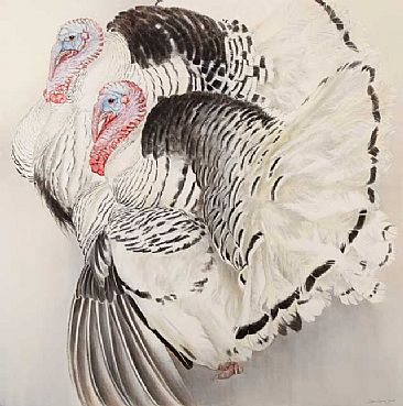 Pied turkeys painting nature art by jonathan sainsbury