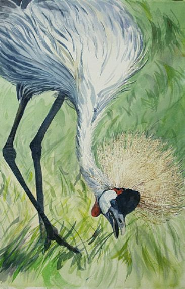 Crown of Feathers - African Grey Crowned Crane by Karyn deKramer