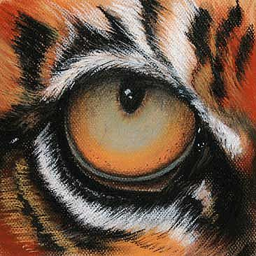 Do Stay VIII - Eye of a Tiger by Norbert Gramer