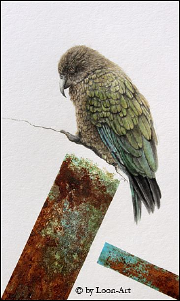 Realism meets Abstraction 3 - Kea by Norbert Gramer