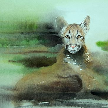 Dissolve 11: Children are our Future - Florida Panther by Norbert Gramer