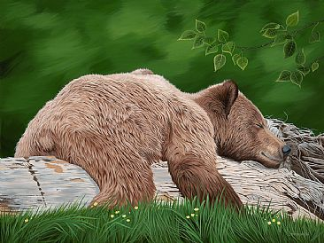 Relax - Grizzly Bear Sleeping on a log by Lynn Erikson
