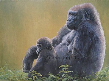 Salome and Komale - Western lowland gorilla by Susan Jane Lees