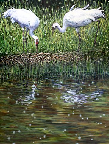 Still Point of the Turning World - Whooping Cranes at nest by Megan Kissinger