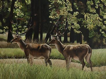 Barasingha (Swamp Deer) - Swamp Deer in a meadow by Sunita Dhairyam