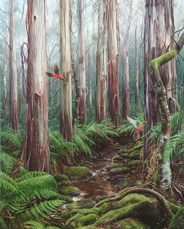 Mountain Ash Forest - Landing of the King Parrots - Victorian Central Highlands Mountain Ash Forest  by Elizabeth Cogley