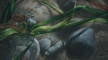 All Knotted Up - seaweed, rocks and sand by Esther Sample
