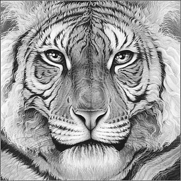 Majesty - Royal Bengal tiger portrait by Gary Hodges