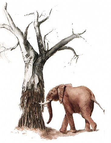 Elephant & the Baobab; sold at charity auction - Elephant and Baobab Tree by Anne Corless