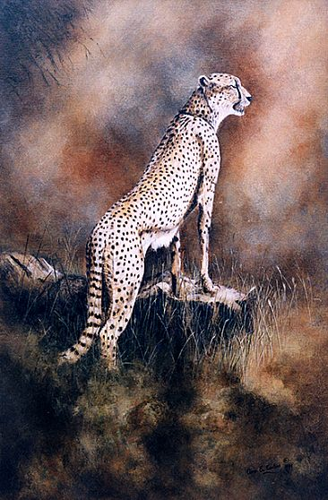The Lookout; Sold at Charity Auction - Cheetah by Anne Corless