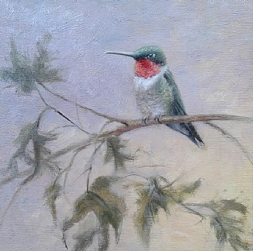 Summer Ruby - Hummingbird by Mary Erickson