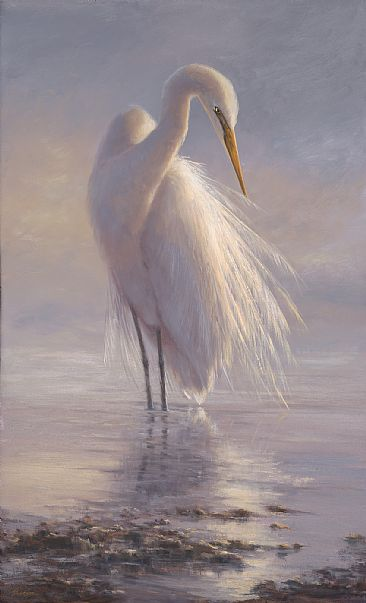 Morning Ritual  - White Egret by Mary Erickson