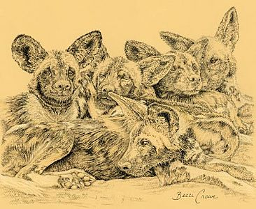 Sleep Heap - African Painted Dogs by Becci Crowe