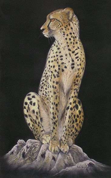 The Sentinel - Cheetah by Paula Wiegmink