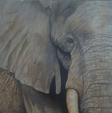 Gentle Giant - SOLD - Elephant by Paula Wiegmink
