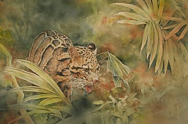 Forest of the Clouded Leopard - Clouded leopard in natural habitat by Jan Lutz
