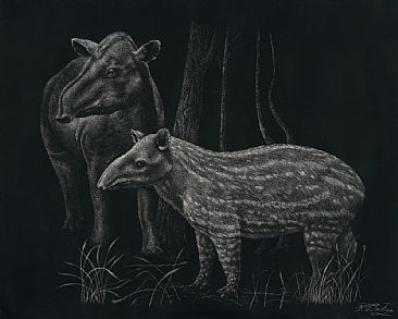 Mother and Child - A Tapir Family Portrait -  by Krish Krishnan