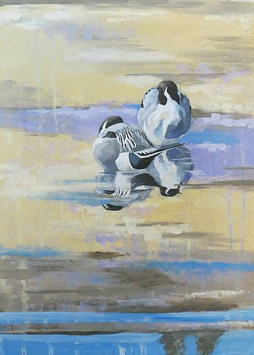 Quiet reflection - Northern Pintails by Russ Heselden