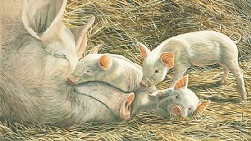 Family Ties - Pigs by Fiona Goulding