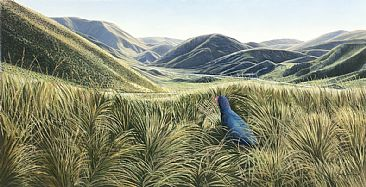 A Perfect World - Takahe in Lindis Pass New Zealand by Fiona Goulding