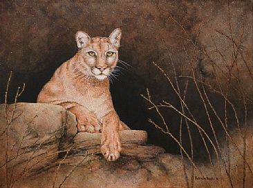 Anticipation - wildlife, cougar by Patricia Banks