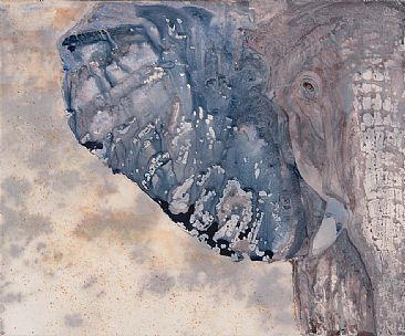 Face to Face - African Elephant by Judy Studwell