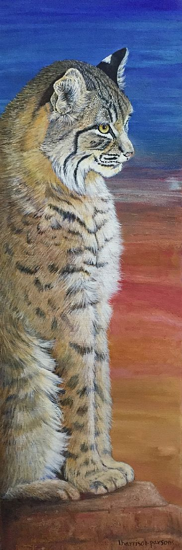 Red Rocks - Bobcat by Linda Harrison-Parsons
