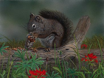 Forest Forager - Squirrel by Caroline Brooks