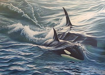 Dual Pursuit - Orca by Jerry Ragg