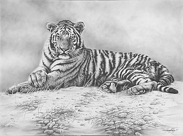 At Peace - Tiger by Jerry Ragg