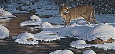 Interrupted Silence - Mountain Lion, Cougar by Jerry Ragg