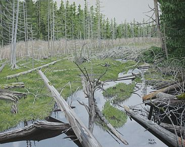 Boneyard - Skeletal deadfalls created an interesting contrast to the living marsh. by Ken  Nash