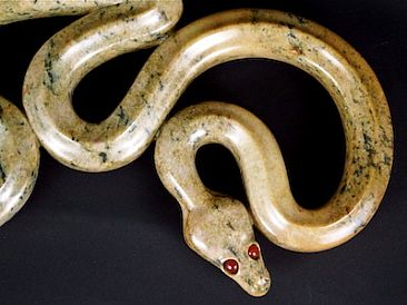 Ball Python Twins - Ball Python at rest; its twin reflected by Tony Mayo