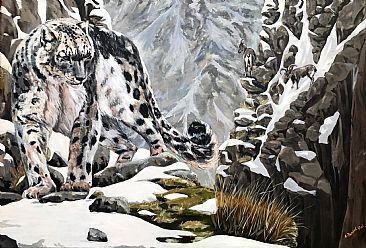 ellusive Hunter - Snow leopard by Ajoy Rai