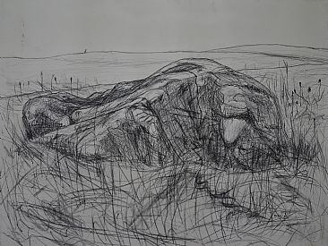 Erratic Drawing - Glacial Erratic by Colin Starkevich