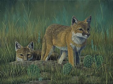 Beating the Odds - Swift Fox - Swift Fox by Colin Starkevich