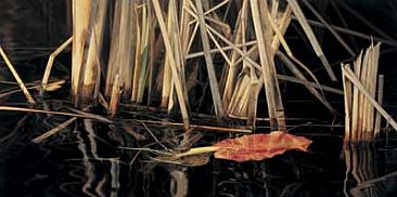 Marsh Reflections - Reflection of Reeds in Marsh Water by Michele Clarkson