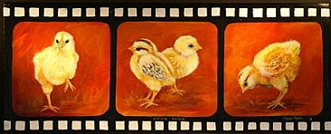 CHICK  FLICK - Chicks by Maria Ryan
