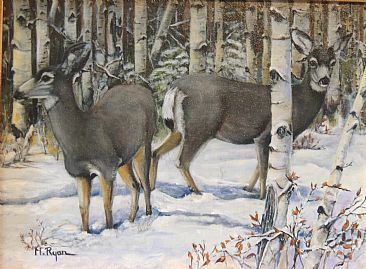 Aspen Encounter - Mule Deer - Mule Deer in the snowy aspens by Maria Ryan